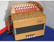 Castagnari Studio D-G button accordion