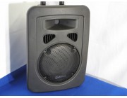8 inch moulded active speaker
