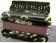 Aliante 3 voice 37-96 black key decorated piano accordion