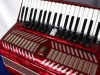 Parrot 41 120 red accordion